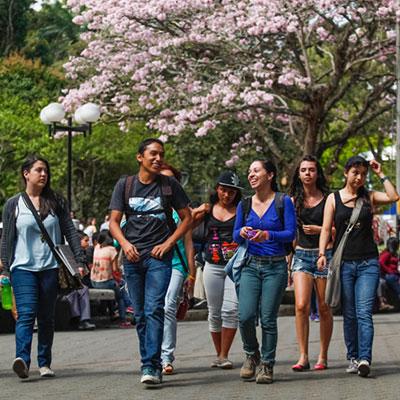 Universitaria